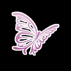 Schmetterling-Lebens-und-Sozialberatung